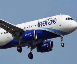 page3news-indigo_flight
