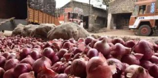 page3news-onions